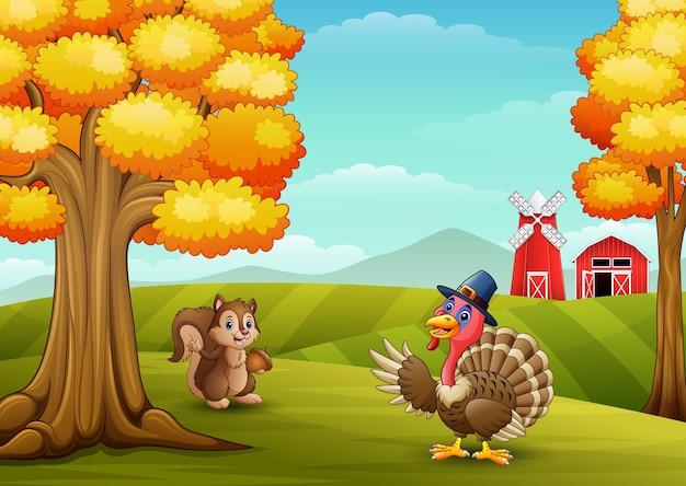 Cartoon turkey with squirrel in farm background