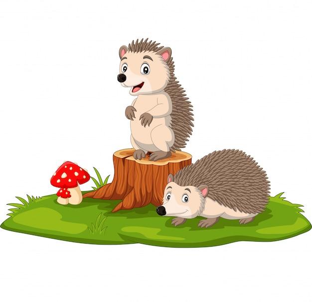 나무 그 루터기에 만화 두 아기 고슴도치