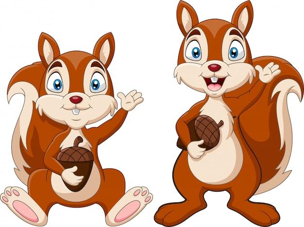 Мультфильм две белки, держа орех