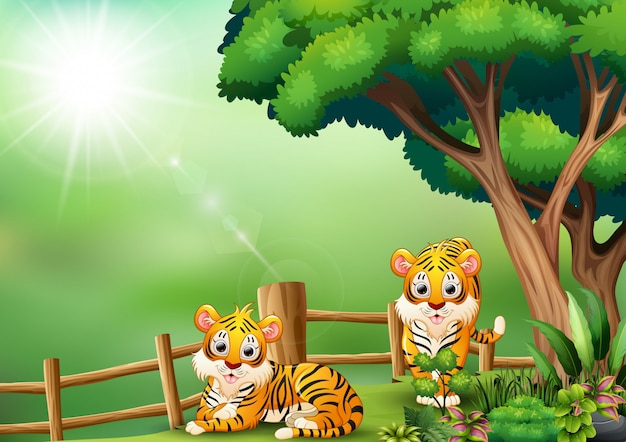 Cartoon two tigers in the jungle
