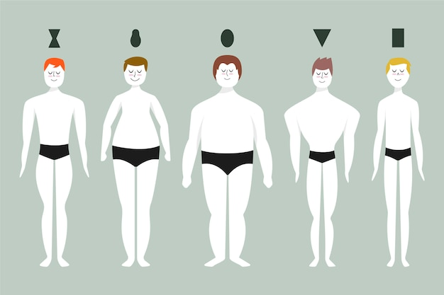 Cartoon types of male body shapes set
