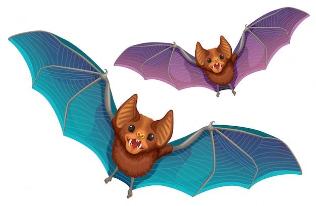 Cartoon vector bats.