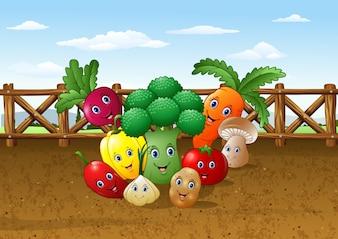 Cartoon vegetable garden farm background