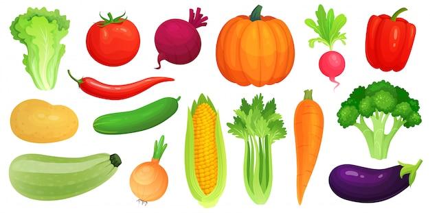 漫画の野菜。新鮮なビーガン野菜、生野菜のズッキーニとセロリ。レタス、トマト、ニンジンのイラストセット