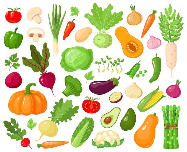 漫画の野菜。ビーガン野菜食品、トマト、カボチャ、ズッキーニ、ニンジン、ベジタリアンの新鮮な生野菜イラストアイコンセット。ベジタリアンズッキーニとにんじん、かぼちゃ野菜
