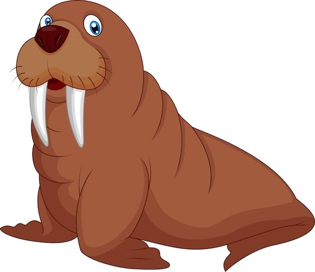 Cartoon walrus