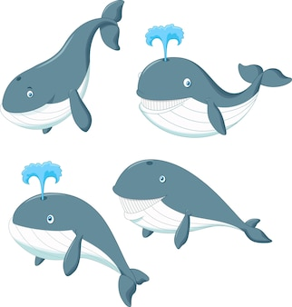Cartoon whale