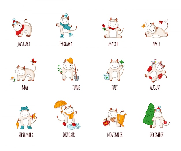 Cartoon white ox or bull set, domestic animals for calendar