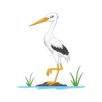 Cartoon white stork on stone