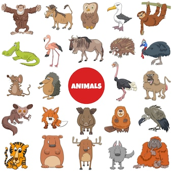 Большой набор персонажей мультфильмов диких животных