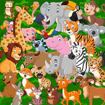 Cartoon wild animals collection set