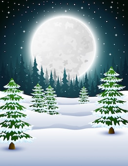 Cartoon of winter night background with pine trees at night