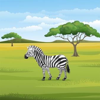 Мультяшная зебра стоит в саванне