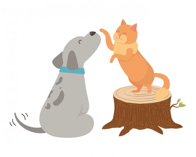 Мультфильм кошка и собака