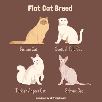 평면 디자인의 고양이 품종 프리미엄 벡터