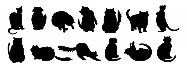 Cat character collection. black flat cartoon silhouette set. different kitty breeds, pet characters. funny cats sitting, sleeping. different stripes spots. hand drawn isolated illustration