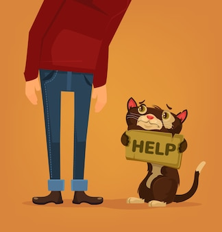 Cat character need home and help illustration