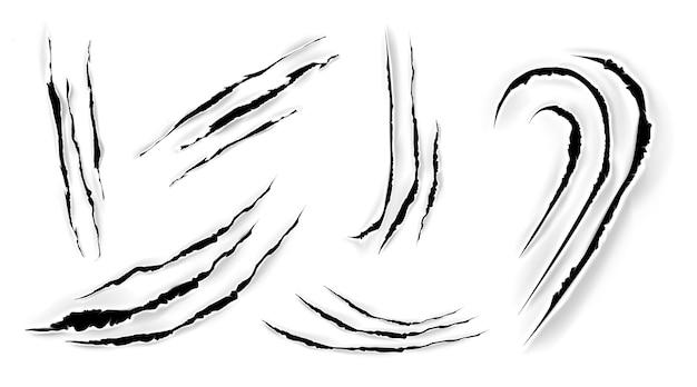 猫の爪が紙に引っかき傷。