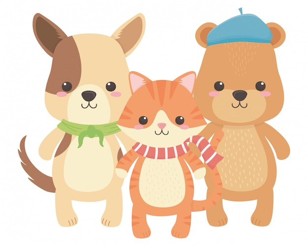 Cat dog and bear cartoon