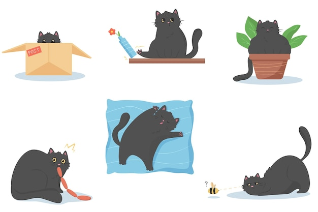 Cat eats sausages in secret, cat sits in flower pot, cat sleeps on soft big pillow, cat push a vase with flower, cat in post box, cat hunts a bee