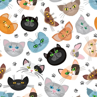 Cat face background with cat paws. cats muzzle and trail paw of cats. illustration