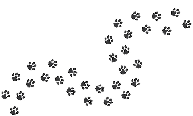 Cat footprints path