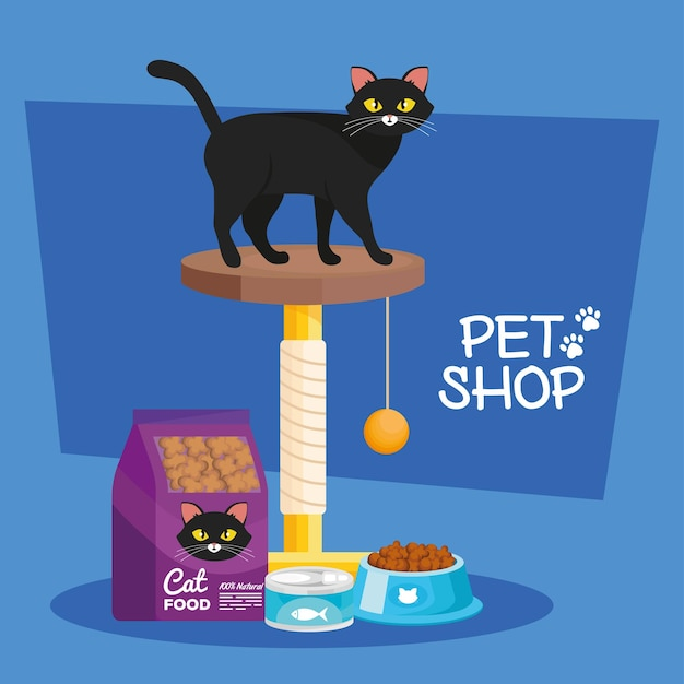 Cat in gym and pet shop