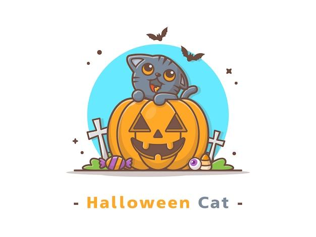 Cat on halloween pumpkin