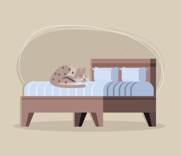 베개와 함께 침대에 고양이