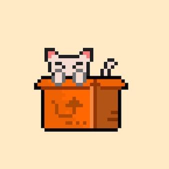 픽셀 아트 스타일이 있는 상자 안의 고양이