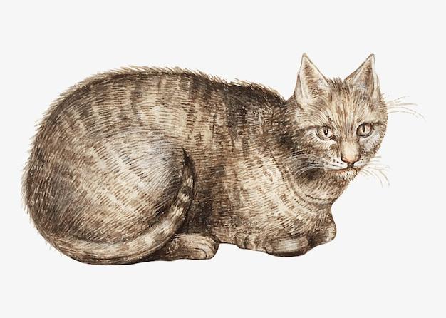 Кот в винтажном стиле