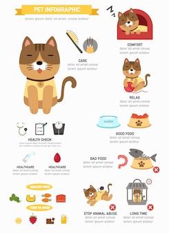Кошка инфографики, информационный плакат готов к печати