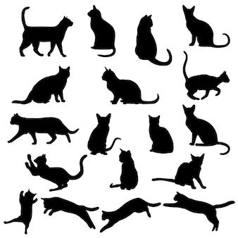 흰색 배경에 고립 된 고양이 다른 포즈의 고양이