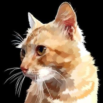 Cat looks sideways isolated