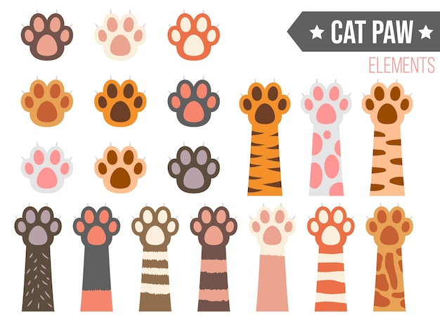 Cat paw   illustration isolated on white background