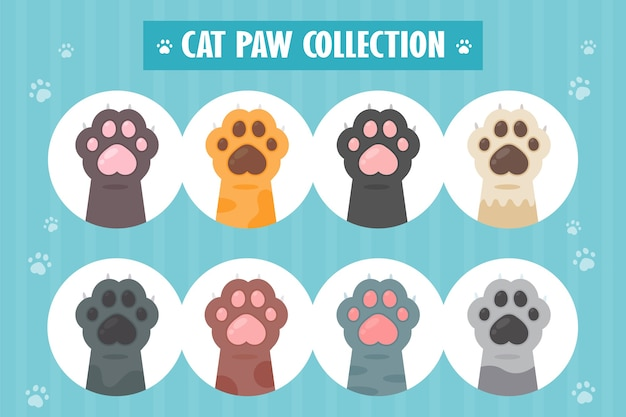 Набор кошачьих лапы различные виды симпатичные рисунки рук котенка, изолированные от.