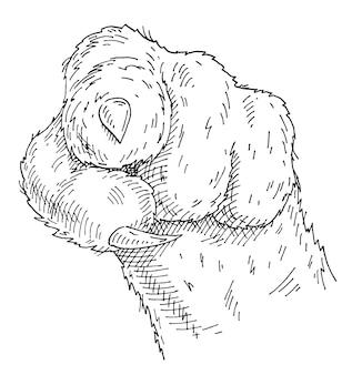 고양이 발 쇼는 앞에서 뷰어를 가리키는 손가락을 보여줍니다. 빈티지 흑백 해칭