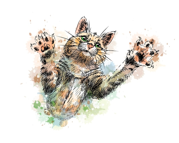 Cat playing from a splash of watercolor, hand drawn sketch.  illustration of paints