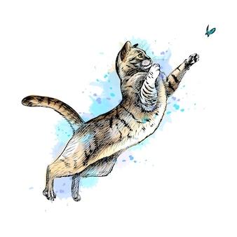 수채화의 스플래시에서 나비와 함께 노는 고양이, 손으로 그린 스케치. 그림 물감