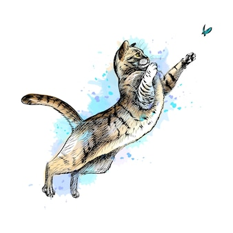 Cat playing with a butterfly from a splash of watercolor, hand drawn sketch.  illustration of paints