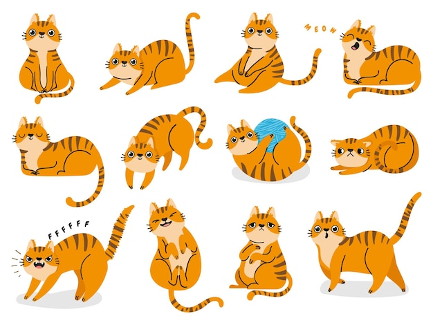 Cat poses. cartoon red fat striped cats emotions and behavior. animal pet kitten playful, sleeping and scared. cat body language vector set. illustration pet cat, cute striped animal kitten