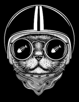 Cat rider illustration