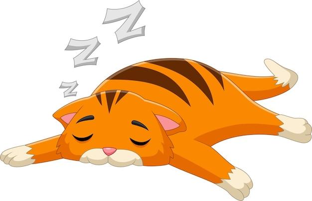 白い背景の上の猫の睡眠漫画