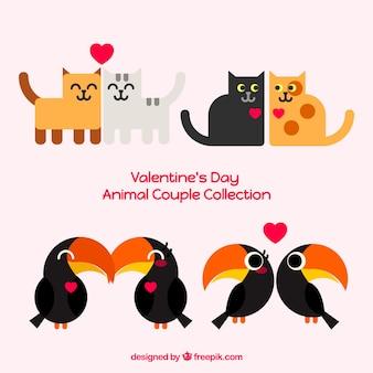 Collezione di coppie di gatti e tucani per san valentino