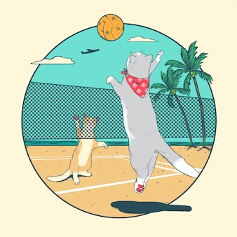 Cat volleyball