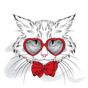 Cat with glasses hearts valentine day