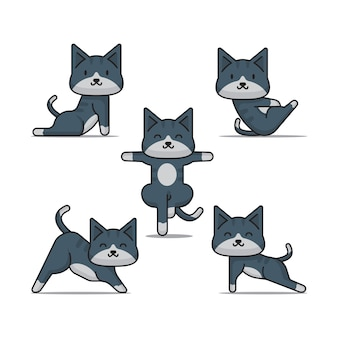 Поза йоги для кошек