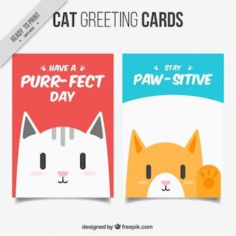 Коллекция открыток cat