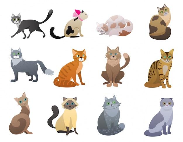 Вектор забавный и милый мультфильм cat разных пород животных набор символов.