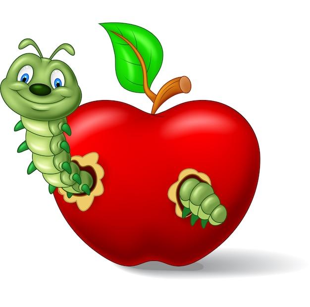 Caterpillars eat the apple